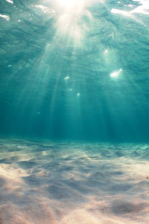 oceanunderwaterview