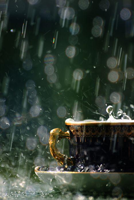 rain falling on teacup