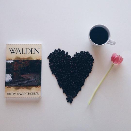 walden book photo