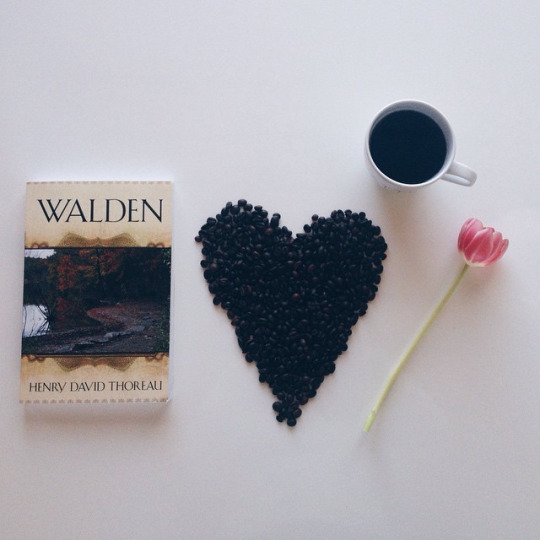 walden book photo